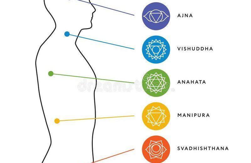 சக்தி நிறைந்த உடல் – அறிவியல் உண்மைகள்