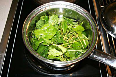 இனிப்புத் துளசி (Stevia)